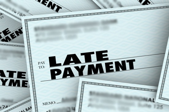 Reasons for Late Payment